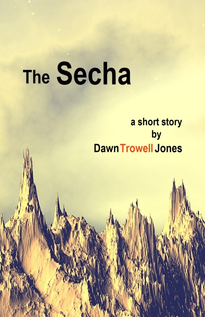 Cover for The Secha