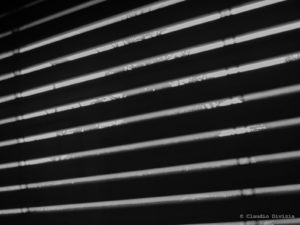 Silhouette of windows blinds seen from a dark room against the sunlight