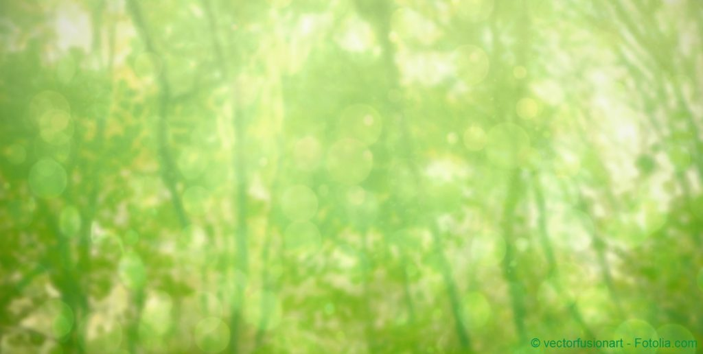 blurry green trees