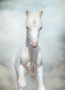 Newborn Unicorn gallops through magical smoke.