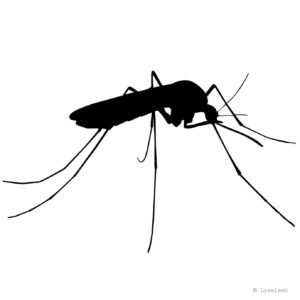 Mosquito Silhouette Vector Graphics